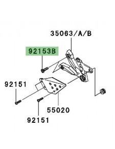 Vis (M8x30) pour fixation des platines repose-pieds avant Kawasaki Z750 (2007-2012)   Réf. 921531624