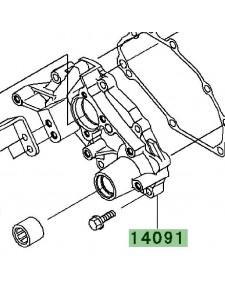 Carter de transmission | Kawasaki W800 (2011-2016)