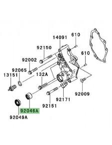 Roulement à aiguilles carter de transmission Kawasaki Versys 650 (2007-2009) | Réf. 920461148